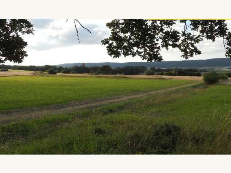 Aussicht Richtung Strögen - Ackerbau Strögen - Bild 1