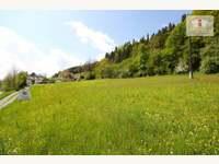 Sonniger Baugrund in St. Urban/Feldkirchen - Grundstück Feldkirchen in Kärnten - Bild 3
